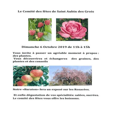 Bourse aux plantes à Saint Aubin des Grois